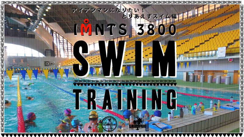 IMNTS3800